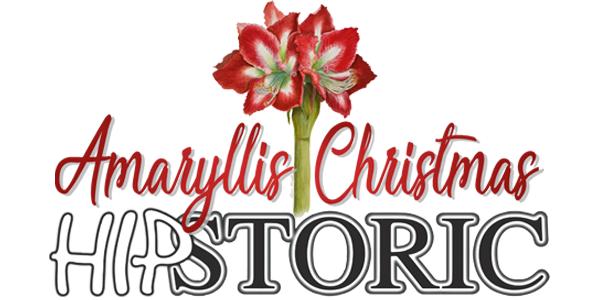 December Hipstoric Logo