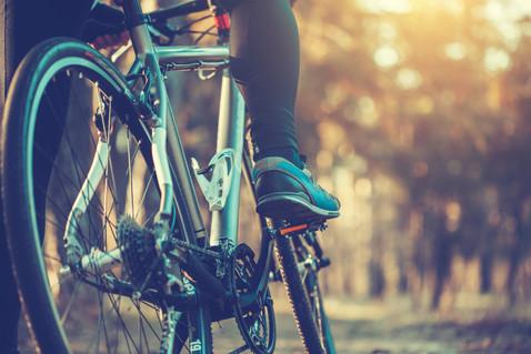 Biking/Hiking Trails