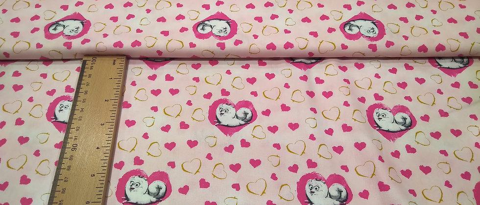 Algodón rosa gatitos