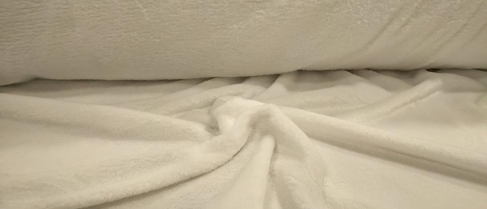 Coralina blanca