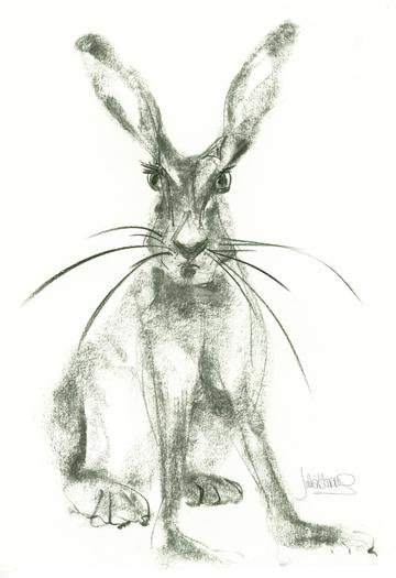 Hare with Attitude Card
