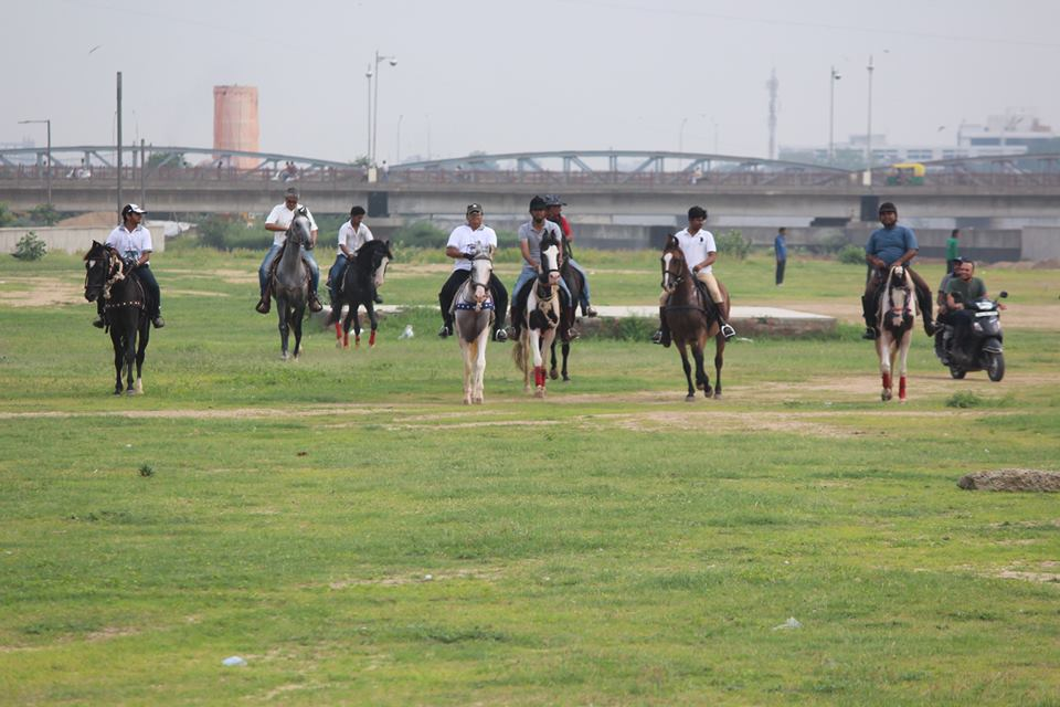 Riverfront Horse Riding