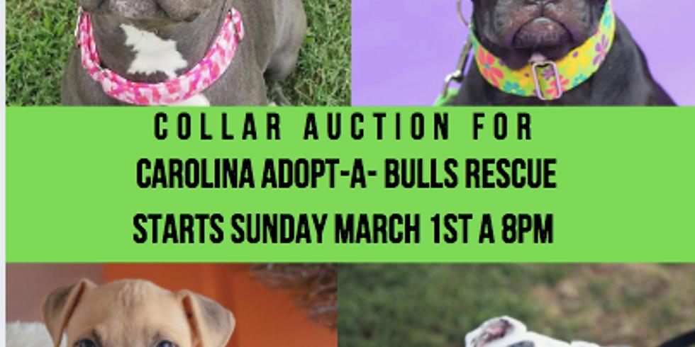 Fundraiser Auction for Carolina Adopt-A-Bulls