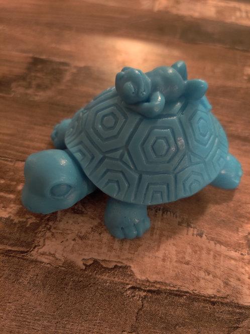 A Turtle's Best Friend