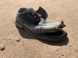 Lost shoe on border road