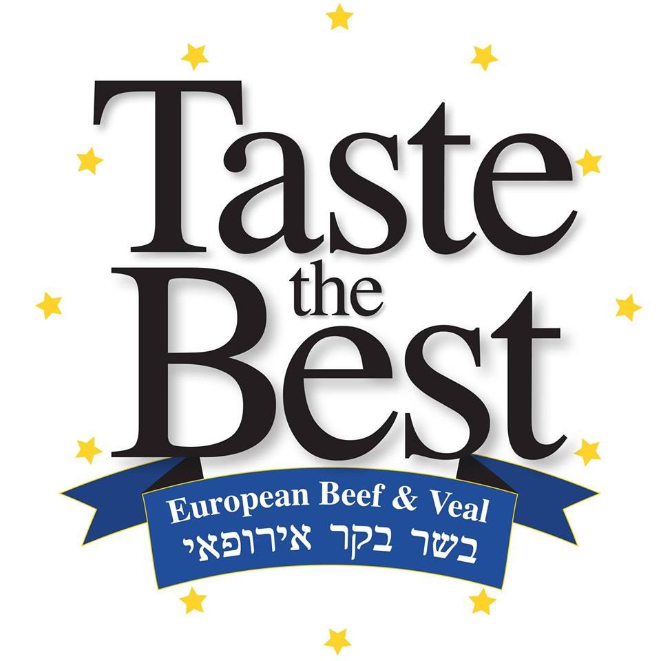 לוגו איחוד אירופי.jpg