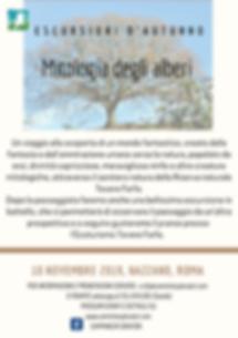 Mitologia degli alberi (1).png