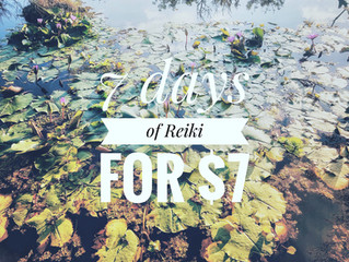 7 Days of Reiki for $7