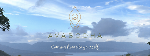 Avabodha Home Website.png