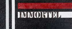 Immortel - Hommage à Samy