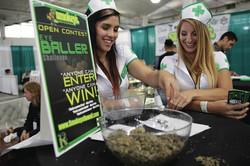 web1_BSN-cannabis-16