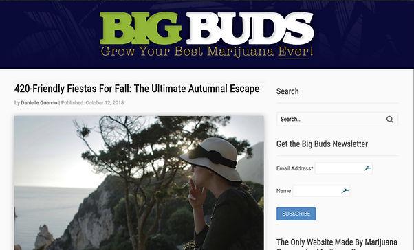 bigbuds2.jpg