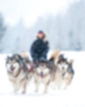 DogSledding_3.jpg