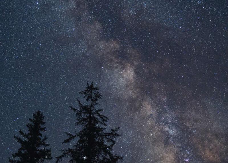 sol-spirit-farm-stars.jpeg