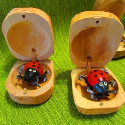 Boite à chagrin coccinelle ou scarabée