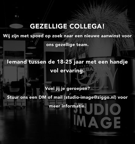 NieuweCollega.jpg