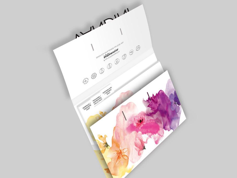 VANDINI Pressemappe, Media Kit