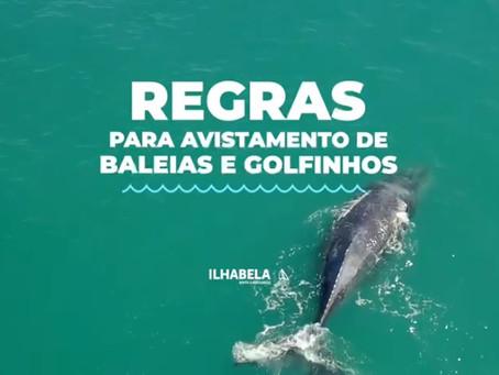 Regras para vistamento de Baleias e Golfinhos