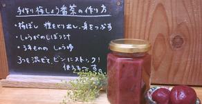 レシピ・梅醤番茶