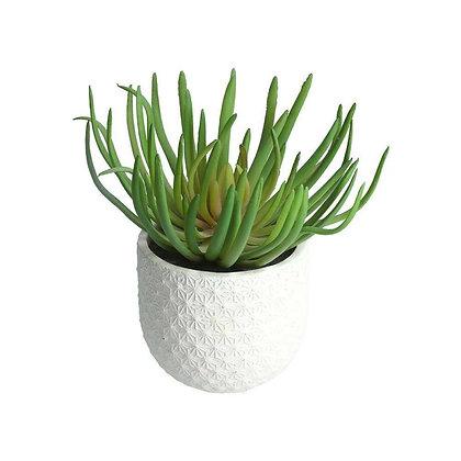 Faux Spike Succulent in White Geo Pot - Gisela Graham