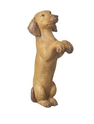 Sausage Dog Animal Pot Hanger - Parlane International