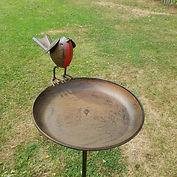 robin bird bath1.jpeg