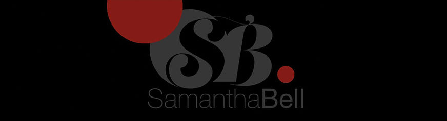 SBwebbanner.jpg