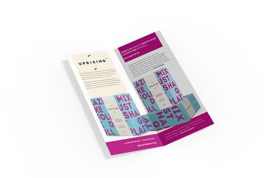 IFE Pocket Guide Advert