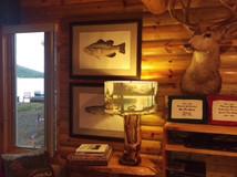 Cabin #16