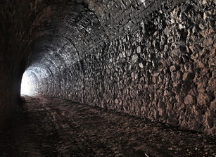 Finding the light at the end of the COVID-19 tunnel
