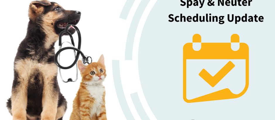 Scheduling Update