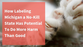 How Labeling Michigan a No-Kill State Has Potential To Do More Harm Than Good