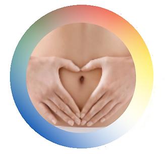 Le ventre, votre deuxième cerveau, prenons-en soin!_Karen CHADELAUD_Chi Nei Tsang.png