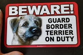 Guard BT On Duty - Thumbnail.jpg