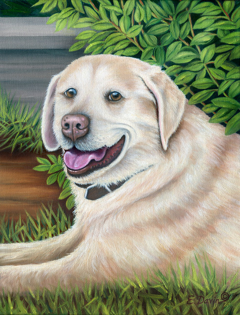 """""""Bailey""""  Oil, Sold"""
