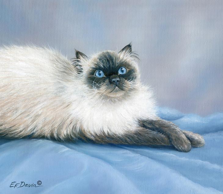 """Himalayan Cat""  Oil, Sold"