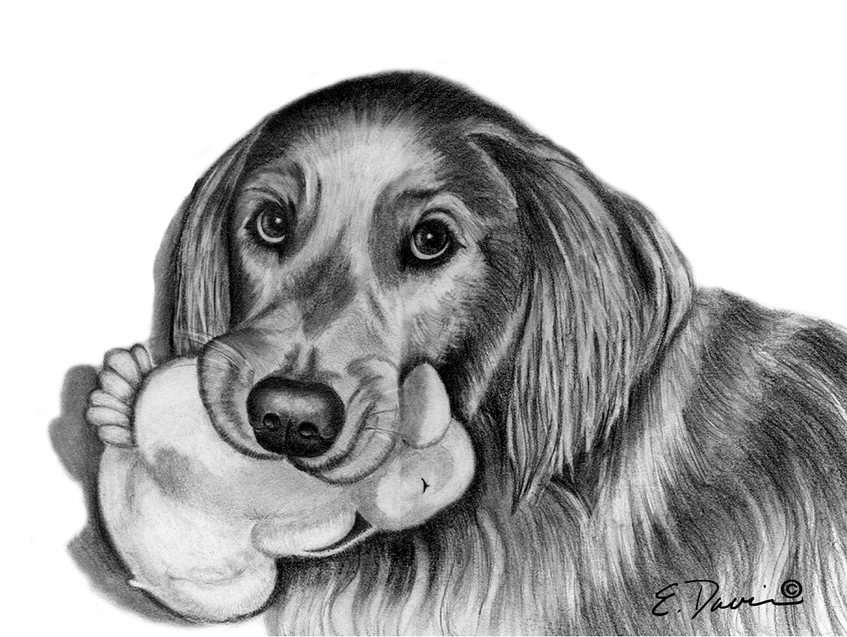 """""""Abby""""  Pencil, Sold"""