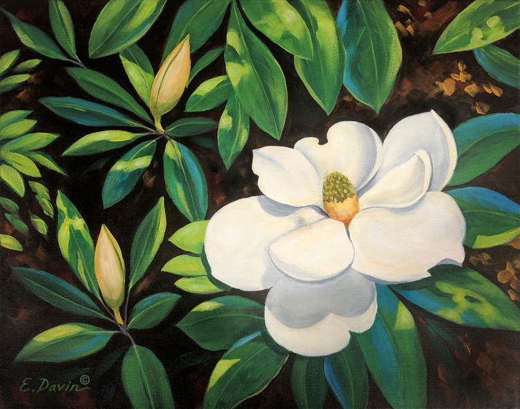 """Magnolias""  Acrylic, Private Collection"