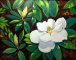 """Southern Magnolias"""
