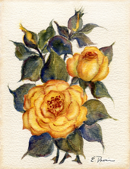 """""""Yellow Roses""""  Watercolor, Private Collection"""