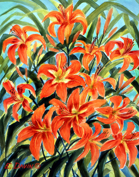"""""""Orange Day Lilies""""  Watercolor, Sold"""