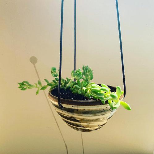 Mini Sedona Collection Hanging Planter