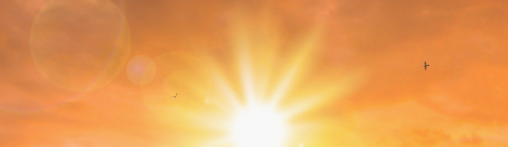 sunshine-1180x342-c-default_edited.png