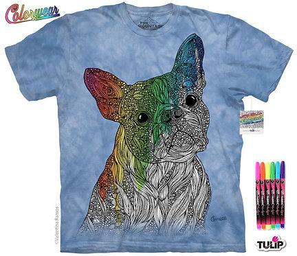 Barky by Valentina Harper Colorwear Kit