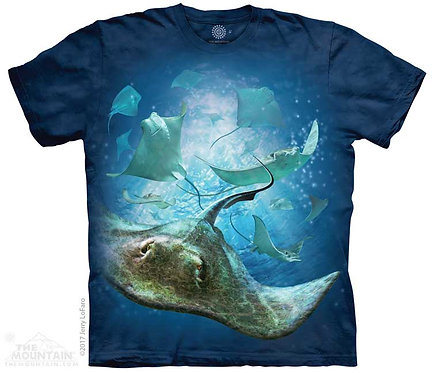 School of Stingrays T-Shirt