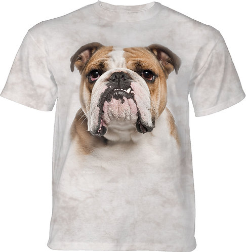 It's A Bulldog Portrait