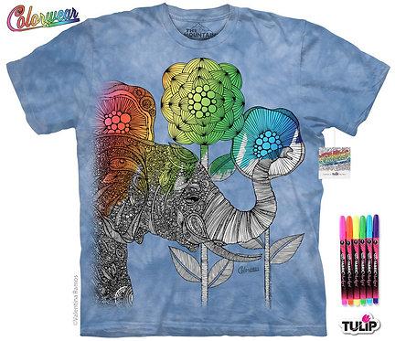 Aaron by Valentia Harper Colorwear Kit