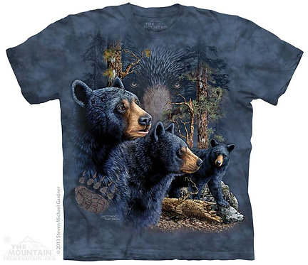 Find 13 Black Bears T-Shirt