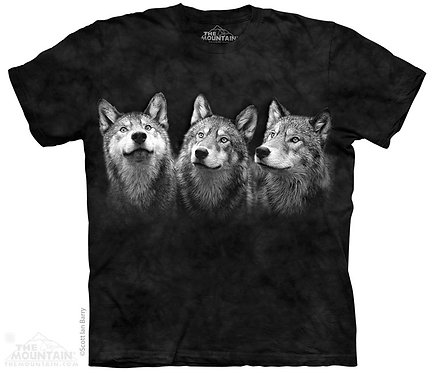 Triad T-Shirt