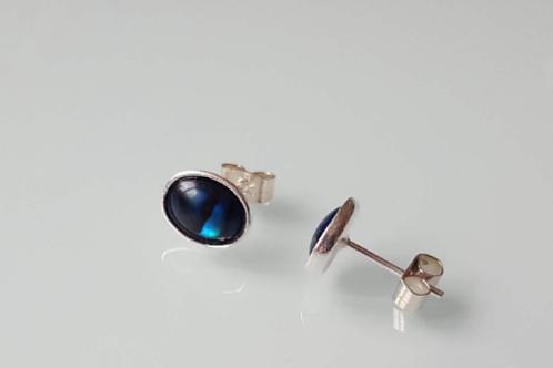 925 Sterling Silver & Blue Abalone Plain Edge Stud Earrings 9 x 7mm